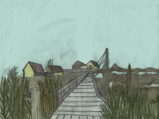 Jamaica Bay Drawings